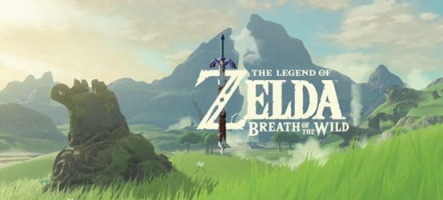 The Legend of Zelda: Breath of the Wild fourbit ses armes