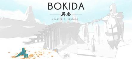 Bokida : un jeu de puzzles en monde ouvert