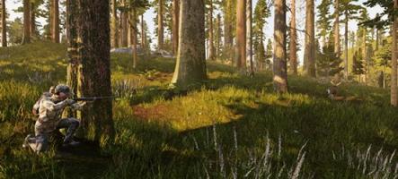 Hunting Simulator : Un bon animal est un animal mort