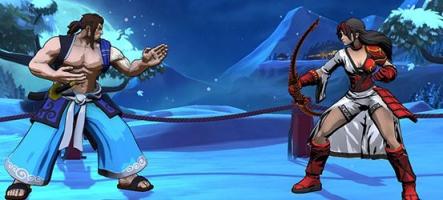 Fantasy Strike, par l'un des développeurs de Street Fighter II