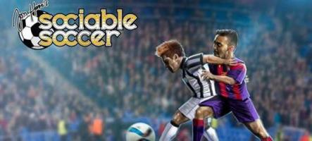 Sociable Soccer sur Steam dès le 12 octobre