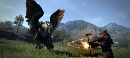 Dragon's Dogma : Dark Arisen est disponible sur PS4 et Xbox One