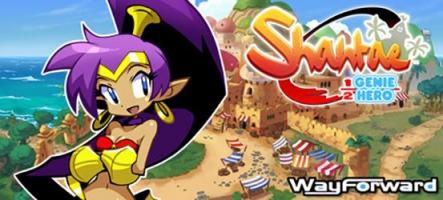 Shantae: Half-Genie Hero Ultimate Edition annoncé sur PS4 et Nintendo Switch