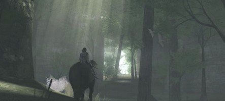 Shadow of the Colossus : découvrez le gameplay sur PS4 !