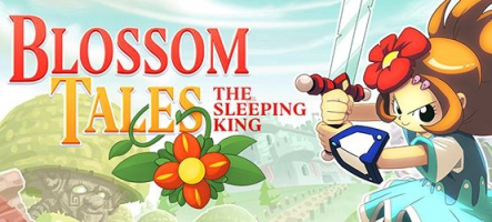 Blossom Tales: The Sleeping King sur Nintendo Switch