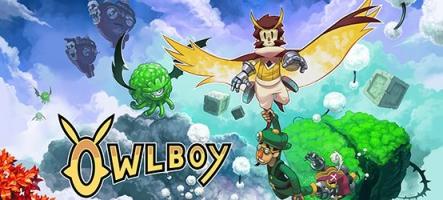 Owlboy : un jeu chouette sur Nintendo Switch et PS4 ?