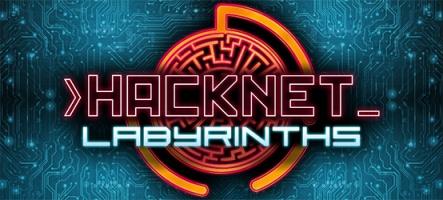 Obtenez Hacknet - Deluxe gratuitement !