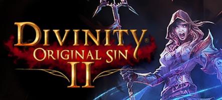 Divinity: Original Sin 2 : du gameplay sur PS4 et Xbox One
