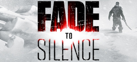 (TEST) Fade to Silence (PC, PS4,...
