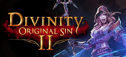 Divinity: Original Sin 2 – Definitive Edition est disponible sur Nintendo Switch