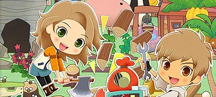 (TEST) Story of Seasons : Pionee...