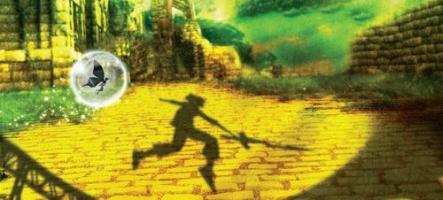 Lost in Shadow : Un titre majeur pour la Wii ?