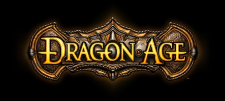 Un patch majeur pour Dragon Age Origins