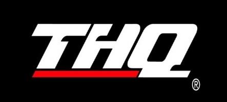 THQ prépare des jeux Kinect et Move pour gamers