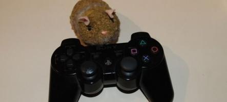 Hamsters D'or 2010 : Elisez le meilleur jeu PS3 de l'année