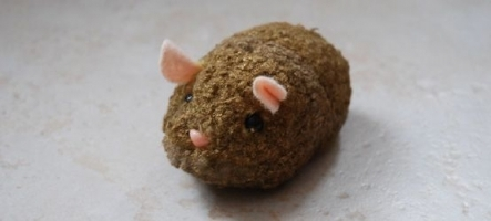 Hamsters d'Or 2011 : Les résultats