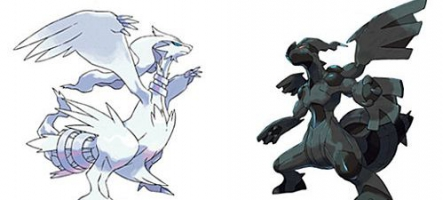 (Test) Pokémon Noir et Blanc (DS)