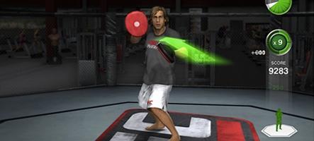 THQ prépare un jeu d'entraînement à l'Ultimate Fighting